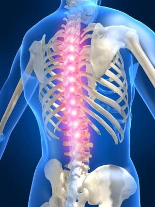 Cyfrowy obraz szkieletu człowieka z podświetlonym kręgosłupem